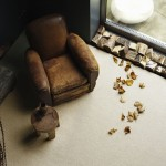 Natural fibre carpets rustic living room