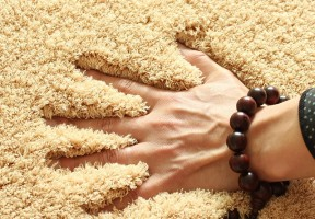 thick pile carpets may newsletter